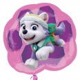 Paw Patrol Pink Skye & Everest Supershape